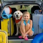 vacation pet sitter