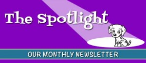 The Spotlight is our Monthly Newsletter